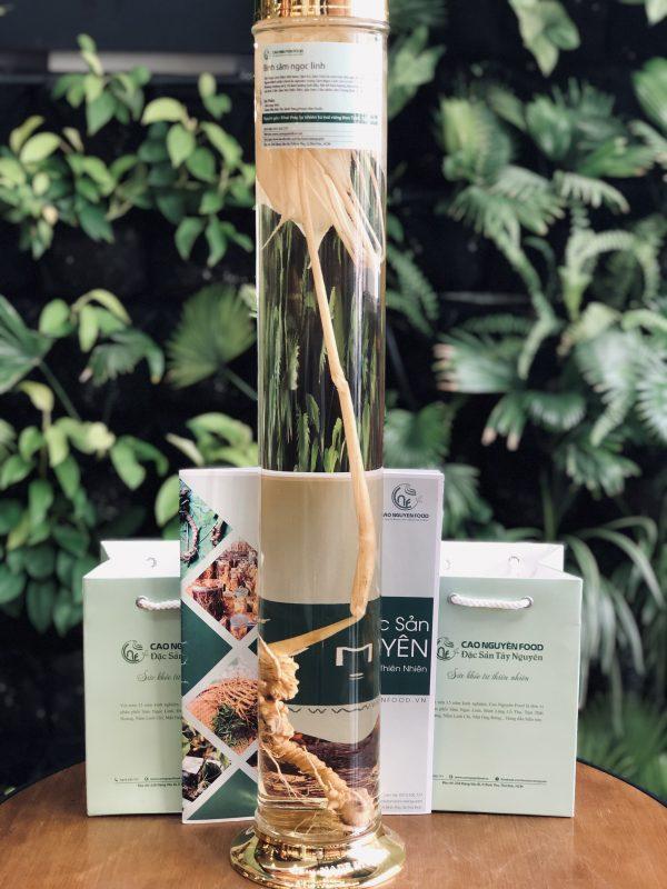 Bình Sâm Ngọc Linh Tự Nhiên - 10 Củ/kg Cao Nguyên Food