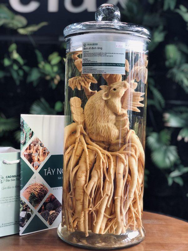 Đinh Lăng Điêu Khắc - Cao Nguyên Food
