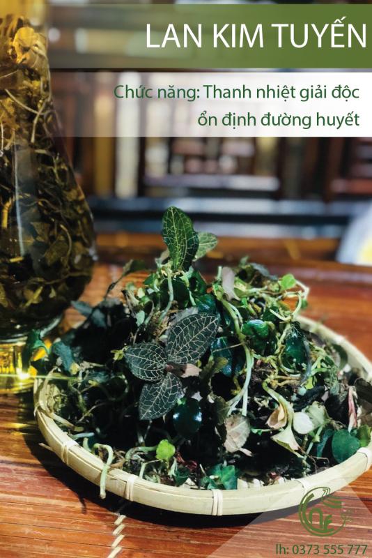 Lan Kim Tuyến Cao Nguyên Food