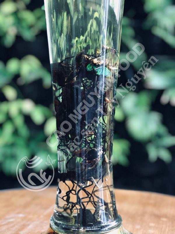 đông trùng hạ thảo tự nhiên - cao nguyên food