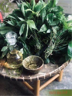 Lá Sâm Ngọc Linh Cao Nguyên Food